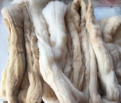 Natural dyes – buddleia and onion skins