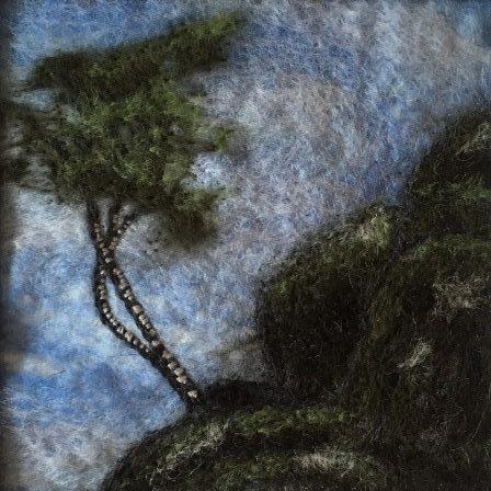 Reflecting on a birch tree